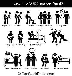 いかに, 広がり, 伝達された, hiv, 手助け