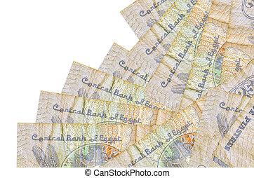 うそ, 25, 隔離された, ビルズ, 銀行業, 支部, 作成, 順序, white., ∥あるいは∥, 概念, お金, 別, エジプト人, piastres