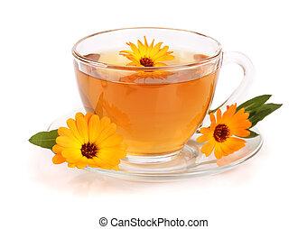 お茶, 隔離された, 背景, calendula, 新たに, 白い花