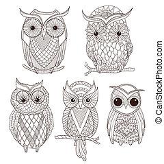 かわいい, セット, owls.