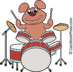 かわいい, 犬, ドラム, 遊び