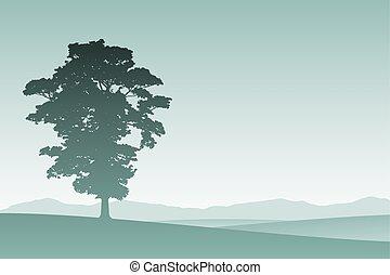 ただ1つだけの木