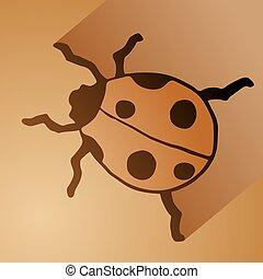 てんとう虫, すてきである