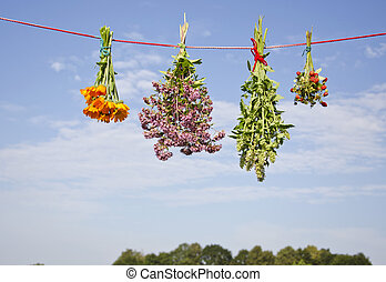ひも, ハーブ, 医学, 4つの花, 束