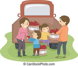 りんご, 家族, 収穫する
