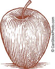 アップル, 木版
