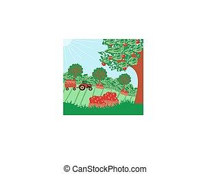 アップル, 運転, 木, トラクターの トレーラー, 風景, 人