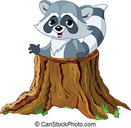 アライグマ, 切り株, 木