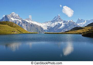 アルプス, 湖, bachalp, スイス人, bernese