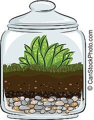 イラスト, 植物学, terrarium