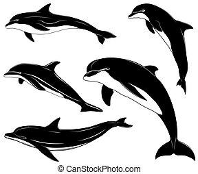 イルカ, セット, コレクション, 入れ墨