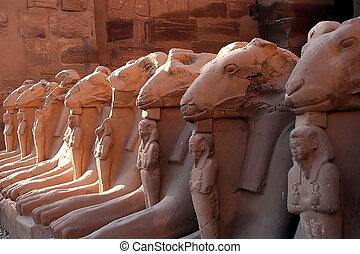 エジプト, 6