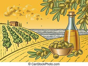 オリーブ, 収穫, 風景
