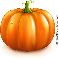 オレンジパンプキン