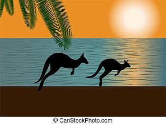 オーストラリア人, 海岸