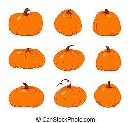 カボチャ, オレンジ, セット, 感謝祭, ベクトル, 秋, 平ら