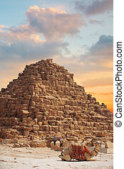 ギザ, egypt., ピラミッド