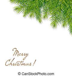 クリスマス, ブランチ, 木