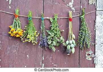 グランジ, 木製である, ハーブ, 医学, 壁, 様々, 花, 束