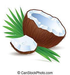 ココナッツ, 半分