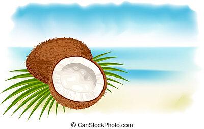 ココナッツ, 浜。, 熟した, 海