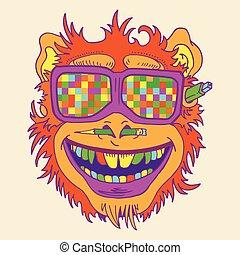 サル, おかしいめがね, 有色人種, 顔