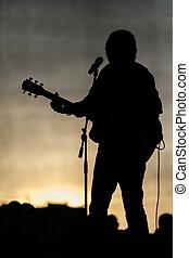 シルエット, コンサート, 音楽家, 音楽, 人気が高い, ステージ