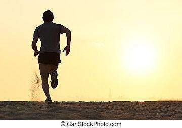 シルエット, ランナー, 背中, 動くこと, 光景, 浜, 人