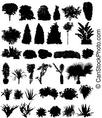 シルエット, 低木, 木