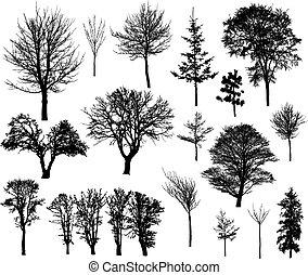 シルエット, 木の 冬