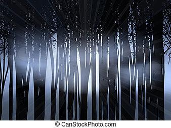 シルエット, 森林, 夜