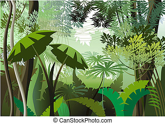 ジャングル, 日