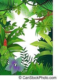 ジャングル, 背景