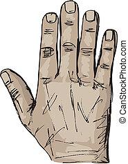 スケッチ, 権利, 手。, イラスト, ベクトル, 左