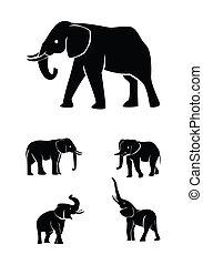 セット, コレクション, 象