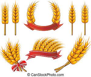 デザイン, 小麦, コレクション, elements.