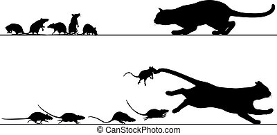 ネズミ, 追跡, ねこ