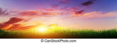 パノラマ, sky., 日当たりが良い, 緑, 日没, 草, 旗