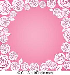 ピンクは 上がった, 白い背景, 周期