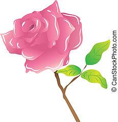 ピンクは 上がった, 白, 茎
