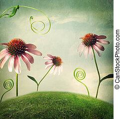 ファンタジー, 花, echinacea, 風景
