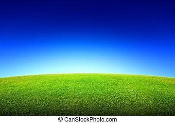 フィールド草, 空, 緑