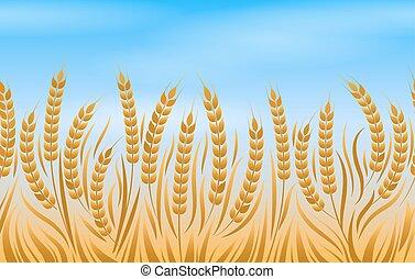 フィールド, 小麦, 風景, 背景