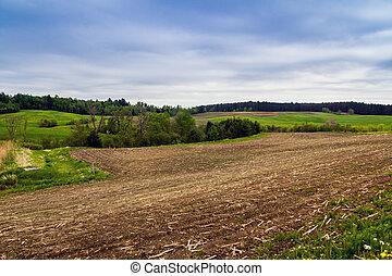 フィールド, 農業, 春
