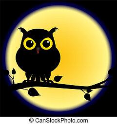 フクロウ, フルである, シルエット, ブランチ, 月