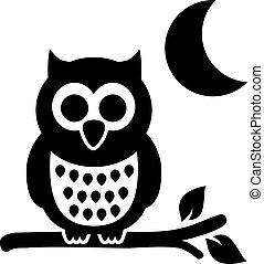 フクロウ, 夜, 月