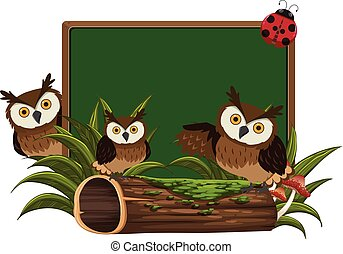 フクロウ, 黒板, 3