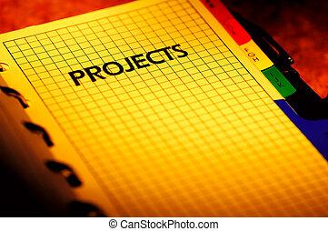 プロジェクト, 立案者