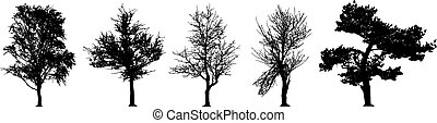 ベクトル, 木, セット, シルエット