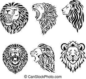 マスコット, ロゴ, 大きい, 顔, セット, ライオン